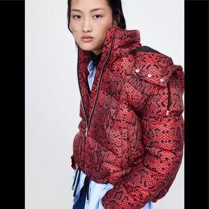 Zara EUC🐍 Snakeskin Puffer Jacket